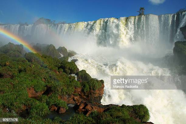 iguazu falls, argentina - radicella stock pictures, royalty-free photos & images
