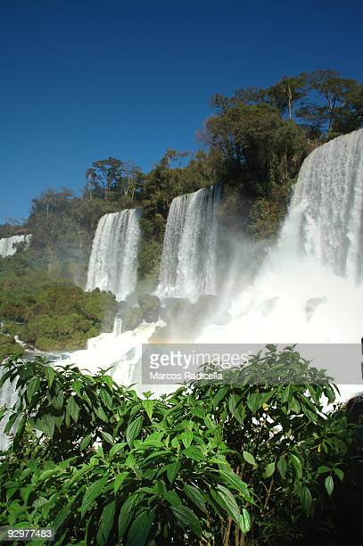 iguazu falls, argentina - radicella stock photos and pictures