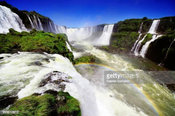 iguazu falls, brazil - paraguay stock pictures, royalty-free photos & images