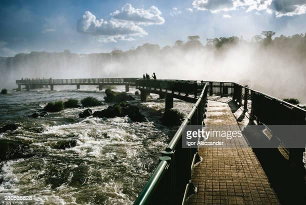 iguazu falls, brazil-argentina, brazilian side - paraguay stock pictures, royalty-free photos & images