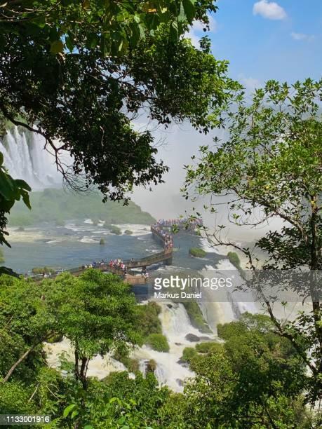 """iguazu falls (cataratas do iguaçu, brazil) garganta do diabo (devil's throat) walkway - """"markus daniel"""" imagens e fotografias de stock"""