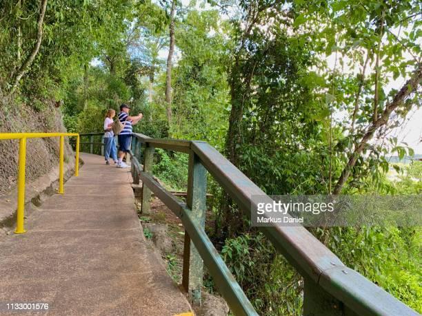 "iguazu falls (cataratas do iguaçu, brazil) - ""markus daniel"" stock-fotos und bilder"