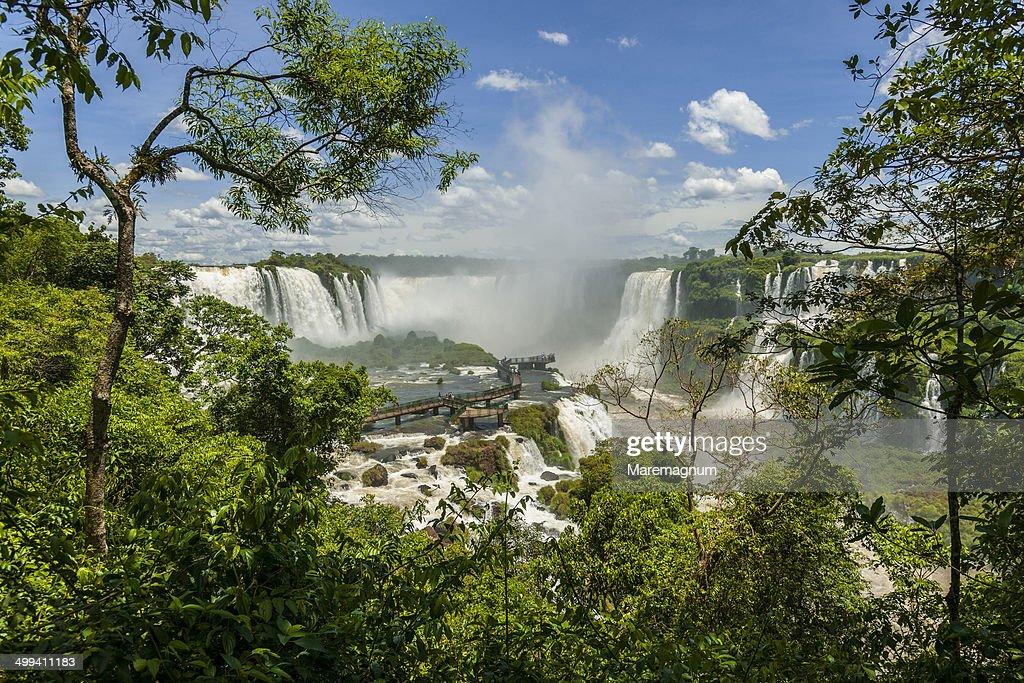 Iguazu Waterfall : Stock Photo