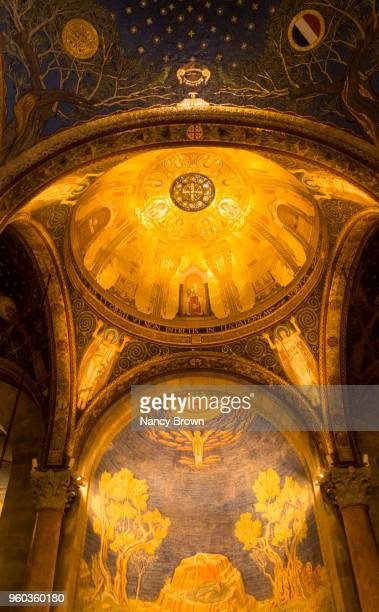 ihe ceiling in the church of all nations jerusalem - garden of gethsemane stock pictures, royalty-free photos & images