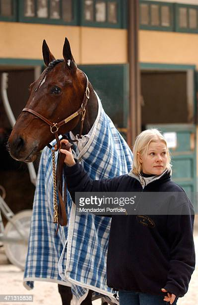 Iina Rastas taking care of Varenne also known as The Captain before taking part and winning the Gran Premio Locatelli at San Siro Racecourse in a...