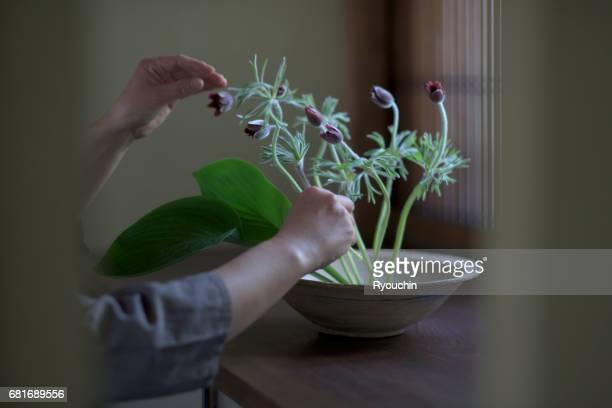 ikebana can live - フラワーアレンジメント ストックフォトと画像