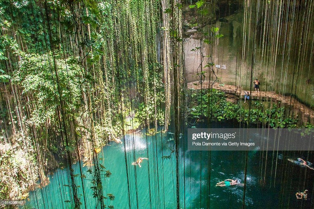 Ik-Kil Cenote, Chichen Itza, Mexico : ストックフォト