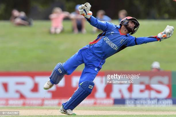 Ikram Ali Khil of Afghanistan fields the ball during the ICC U19 Cricket World Cup Semi Final match between Australia and Afghanistan at Hagley Oval...
