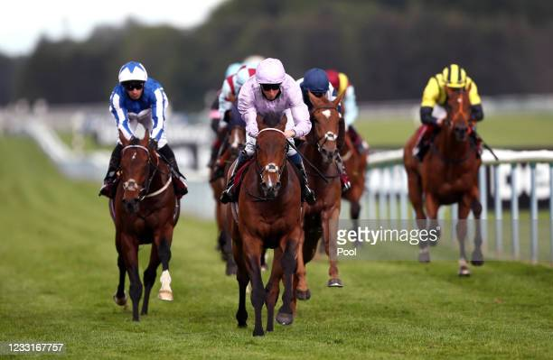 Il Bandito ridden by William Buick on their way to winning the Betway Casino Handicap at Haydock Park Racecourse on May 29, 2021 in...