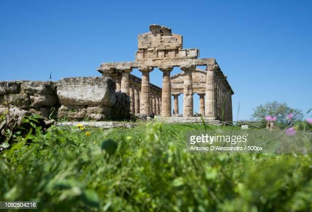 Il tempio di Atena a Paestum