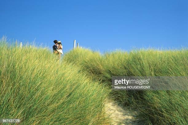 L'ile de Noirmoutier les dunes de luzéronde L'ile de Noirmoutier les dunes de luzéronde