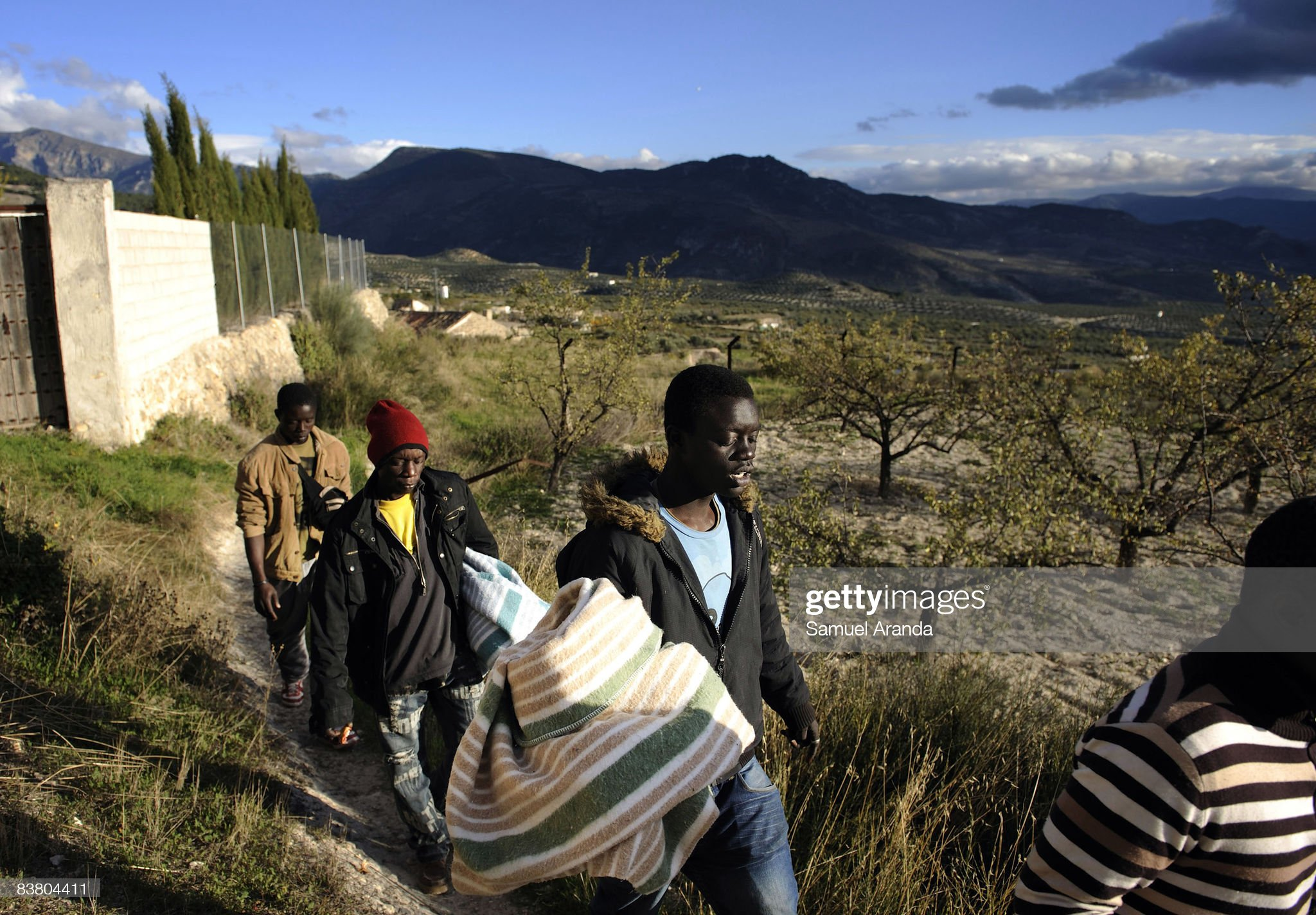 Fewer Jobs For Immigrant Workers In Spanish Olive Harvest : News Photo