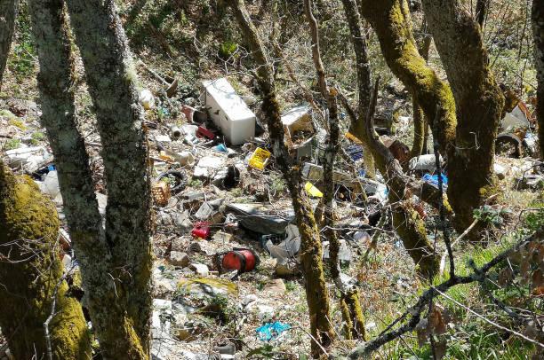 illegal landfill inside a forest in the cantabrian range (spain) - plastico fotografías e imágenes de stock