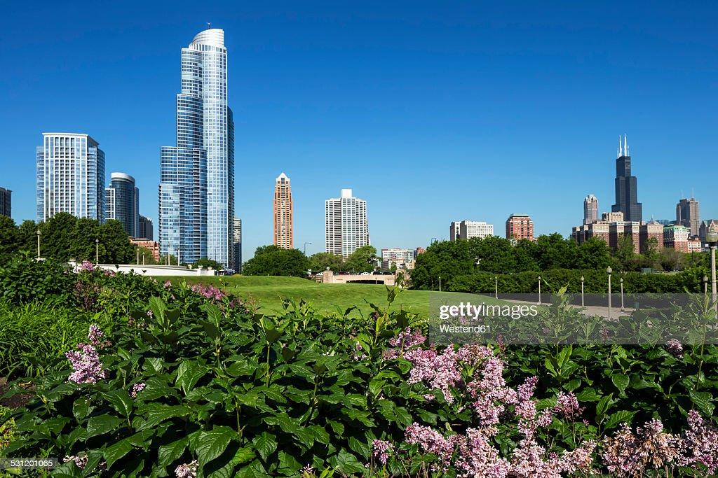 USA, Illinois, Chicago, Millennium Park, : Stock Photo