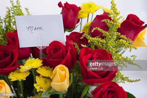 USA, Illinois, Metamora, Bunch of roses with tag reding 'mom'