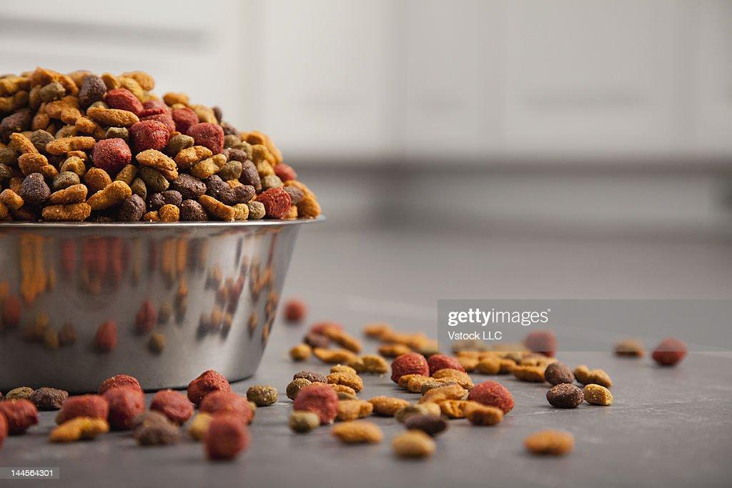 USA, Illinois, Metamora, Close-up of bowl full of dog food : Stock Photo