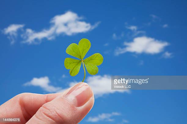 USA, Illinois, Metamora, Girl's (12-13) hand holding clover against blue sky