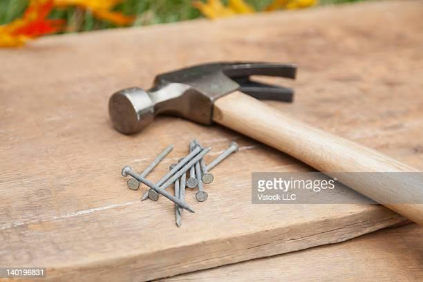 USA, Illinois, Metamora, Hammer and nails on wood