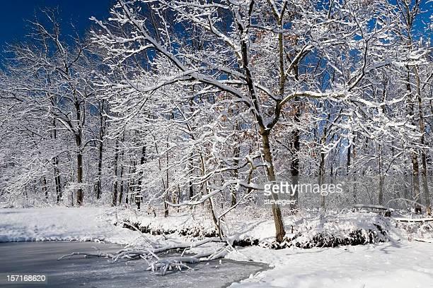 illinois winter wonderland - geneva illinois stock pictures, royalty-free photos & images