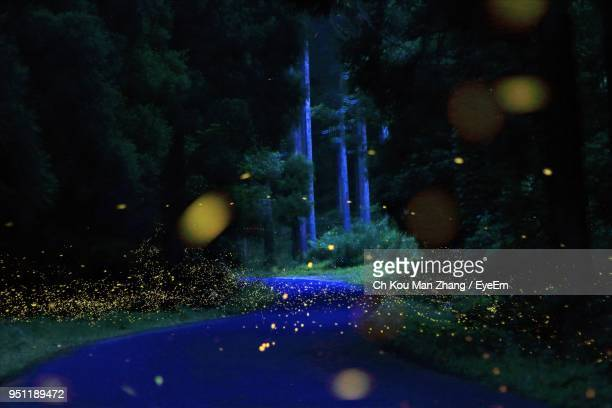 illuminated blue lights at night - glowworm stock pictures, royalty-free photos & images