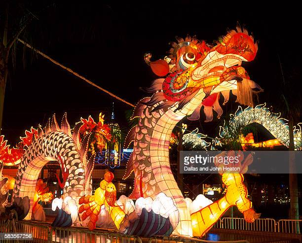 Illuminated Chinese Dragon on New Year's Eve, Hong Kong, China