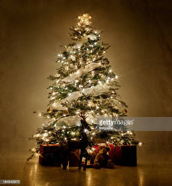 illuminated christmas tree at night - christmas tree stock pictures, royalty-free photos & images