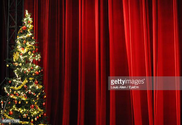Illuminated Christmas Tree In Front Of Stage Curtains