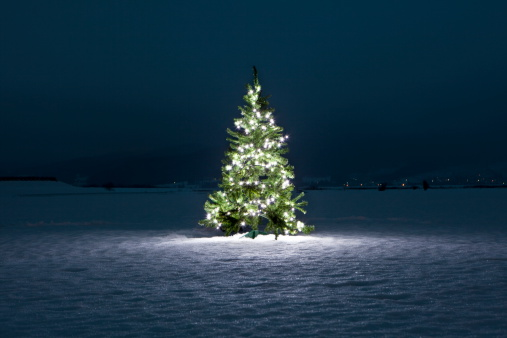 Illuminated christmas tree on the snow at night - gettyimageskorea