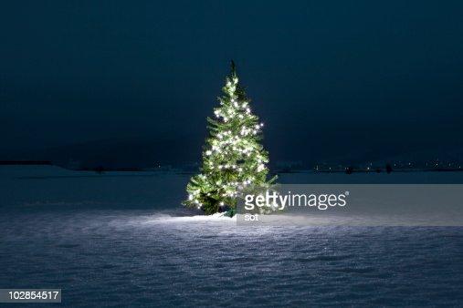 Illuminated christmas tree on the snow at night