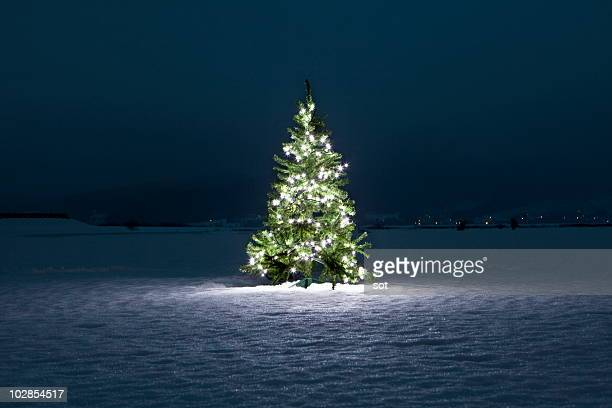 illuminated christmas tree on the snow at night - verlicht stockfoto's en -beelden