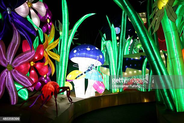 Illuminated creatures and plants in Land of the Giants at Illuminasia the world's biggest indoor illuminations at Blackpool Winter Gardens on April...