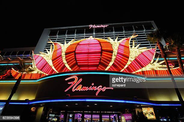 illuminated flamingo las vegas sign and hotel - flamingo las vegas stock pictures, royalty-free photos & images