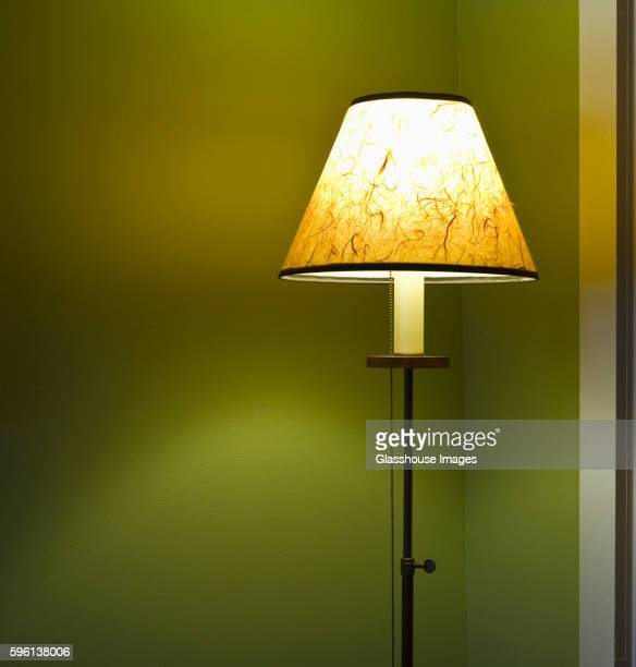 Illuminated Floor Lamp with Shade