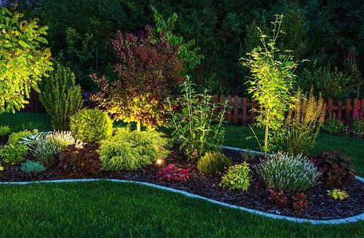 Illuminated Garden 480637902