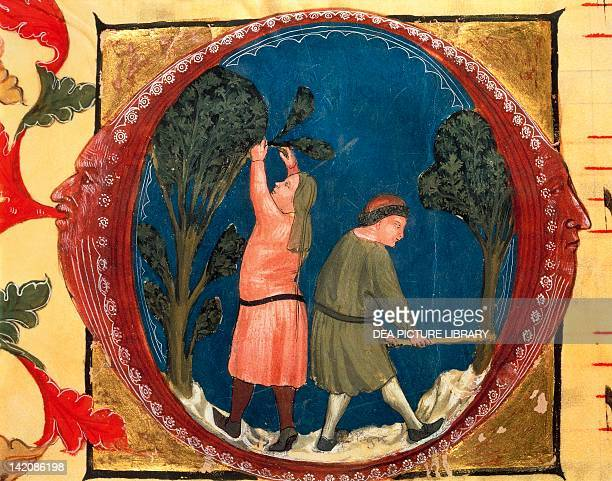 Illuminated initial capital letter O with agricultural scenes in the centre by Turone Latin manuscript Italy 14th Century