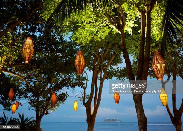 Illuminated lanterns hanging from trees near ocean
