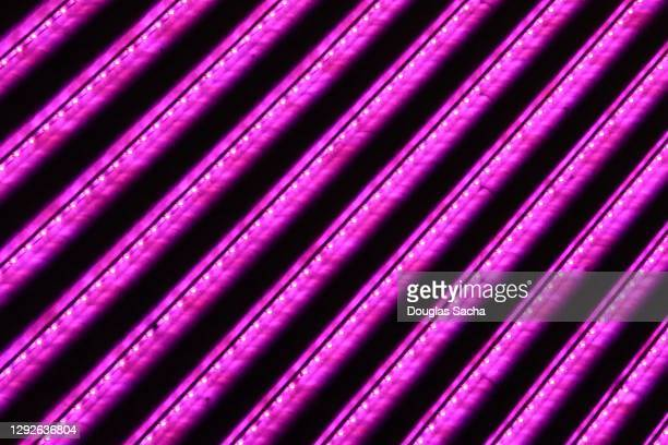 illuminated light display - electric light stock pictures, royalty-free photos & images