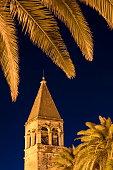 illuminated palm trees church tower old