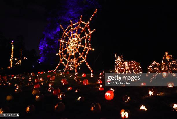 Illuminated pumpkins in the shape of a web and spiders are on display during the Great Jack O'Lantern Blaze at Van Cortlandt Manor in CrotononHudson...
