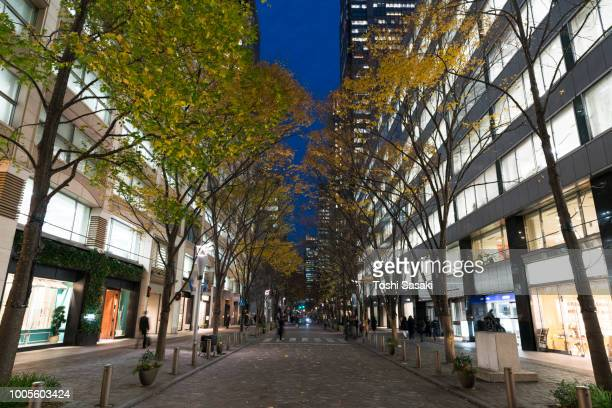 illuminated rows of trees stand along marunouchi naka-dori street for christmas season, which street is surrounded by many shops and boutiques in high-rise office buildings at marunouchi chiyoda tokyo japan on december 12 2017. - 丸の内 ストックフォトと画像