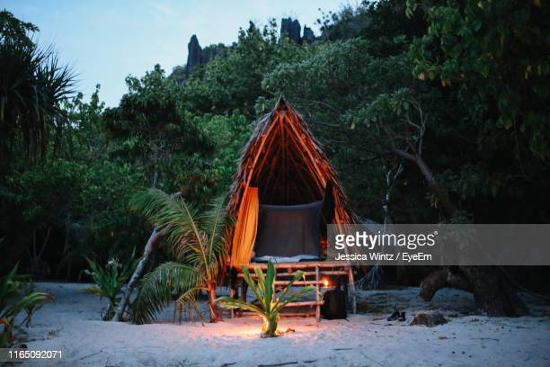 illuminated tent on sand at beach against trees - shack stock pictures, royalty-free photos & images