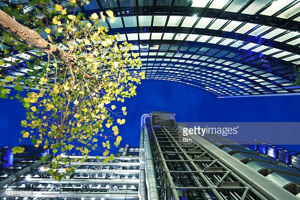Beleuchtet Baum zwischen den Firmengebäuden in London bei Nacht
