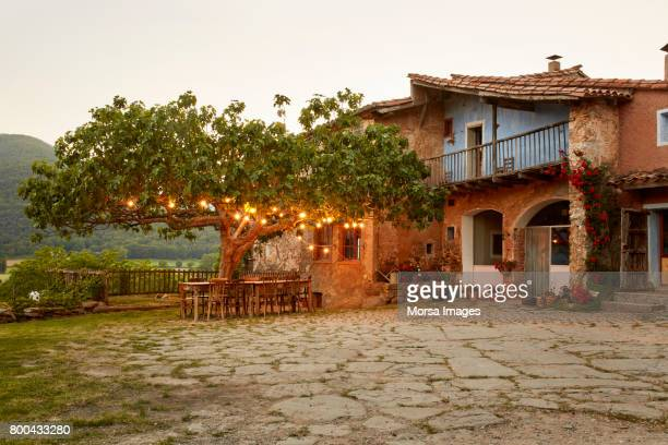 illuminated tree outside house in yard - catalonia stock pictures, royalty-free photos & images