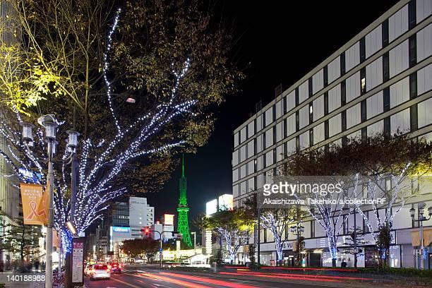 Illuminated Tree-lined Street