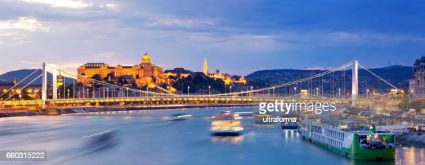 Illuminated view of Elizabeth Bridge in Budapest at night