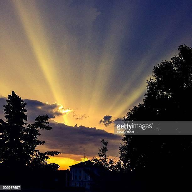 illuminating sunbeams - silvia casali bildbanksfoton och bilder