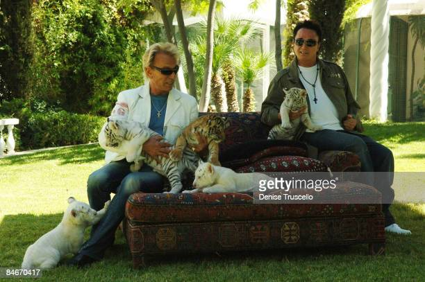 Illusionists Siegfried Fischbacher and Roy Horn appear with 6-week-old tiger cubs June 12, 2008 in Las Vegas, Nevada. The cubs will take residence at...