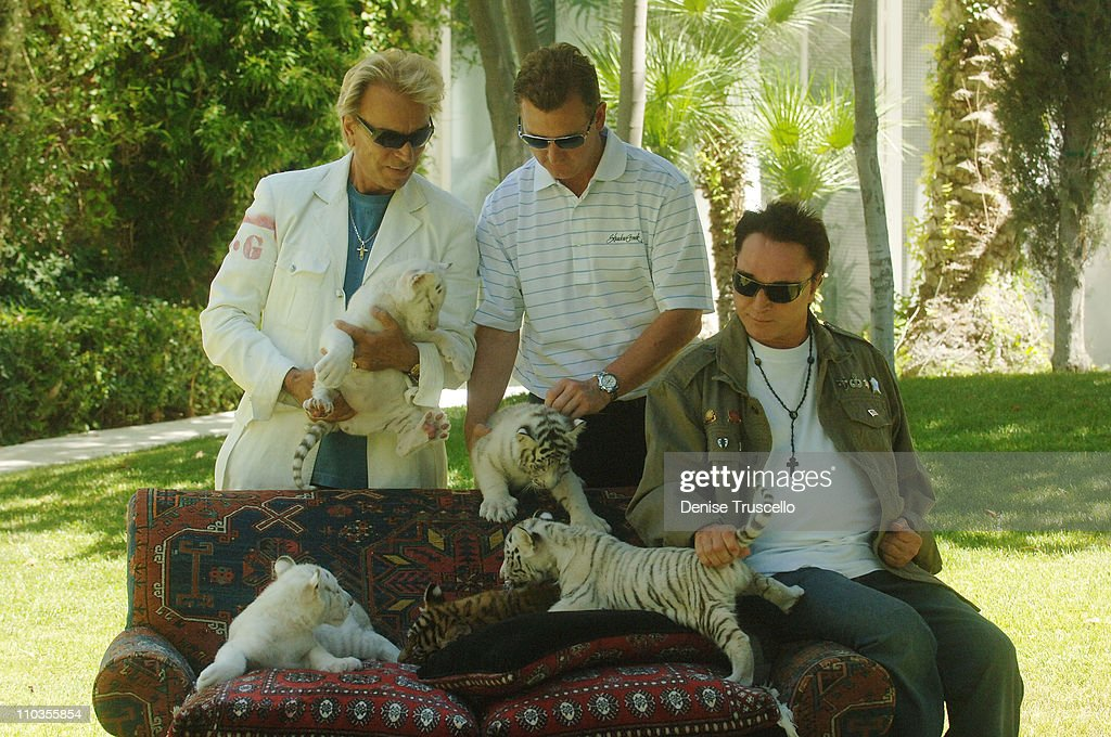 Illusionists Siegfried & Roy Appear With 5 Week Old Tcubs on June 12,