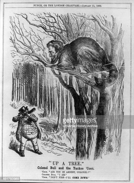 Illustration called Up a Tree 1862