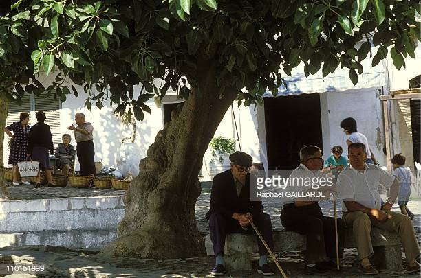 Illustration Catalonia in Cadaques Spain in May 1992 Market place in Cadaques